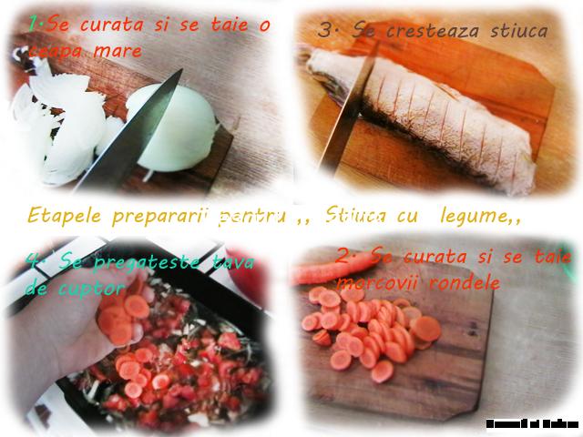 stiuca-cu-legume-2