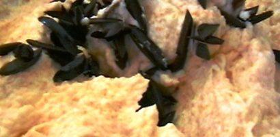 Salata din icre de caras