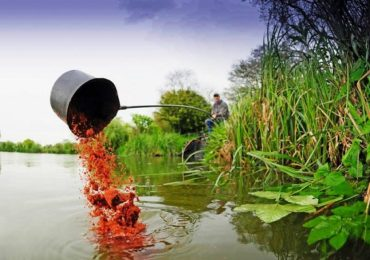 Pescuitul in apropierea malului