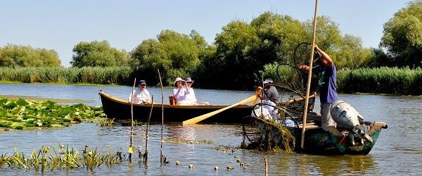 pescuit Delta