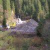 Interese majore pentru distrugerea naturii