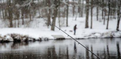 Comportamentul crapilor pe timp de iarna